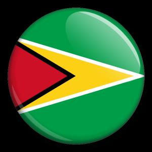 Státní vlajka - Guyana