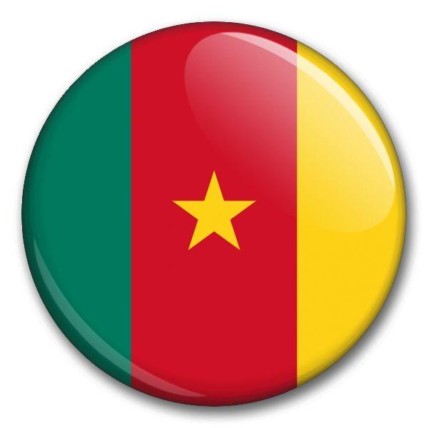 Státní vlajka - Kamerun