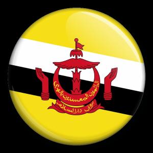Státní vlajka - Brunej
